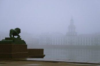 В Санкт-Петербурге ожидается  туман
