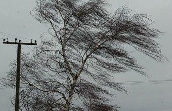 В Санкт-Петербурге ожидается усиление ветра ветра
